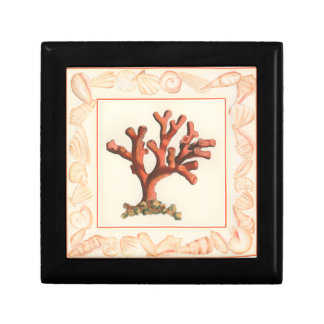 Red Coral with Conch Shell Border Gift Box
