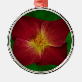 Red Cosmos Flower Design Silver-Colored Round Decoration
