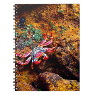 Red Crab Notebook