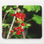red currant mousepad