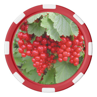 Red Currants on the Plant. Green Leaves. Poker Chips