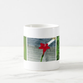 Red Cypress Vine Mug