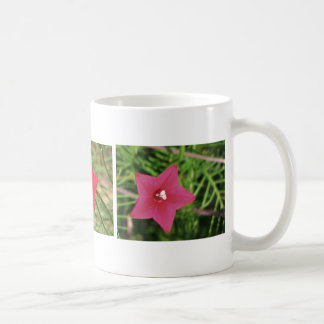 Red Cypress Vine Mugs