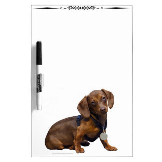 Red Dachshund Dog Decorative Dry Erase Board