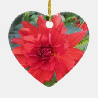 Red Dahlia Plant Christmas Ornament