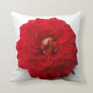 Red Dahlia Soft Petals Vintage Photography Cushion