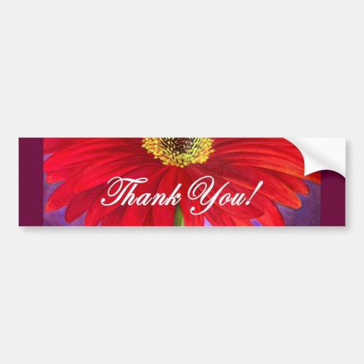 Red Daisy Flower Painting - Multi Bumper Stickers