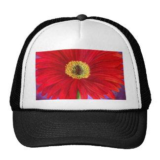 Red Daisy Gerber Flower Painting Art - Multi Trucker Hat