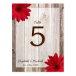 Red Daisy Rustic Barn Wood Wedding Table Number Post Cards