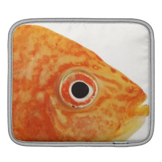 Red Deacon fish iPad Sleeve