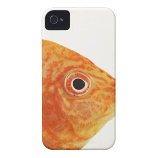 Red Deacon fish iPhone 4 Case-Mate Case