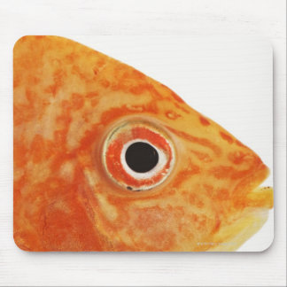 Red Deacon fish Mouse Mat