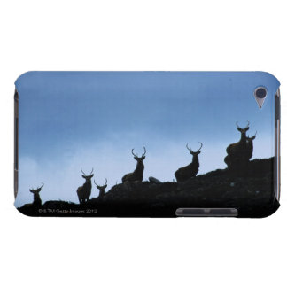 RED DEER (CERVUS ELAPHUS) SILHOUETTED AGAINST BARELY THERE iPod CASE
