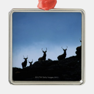 RED DEER (CERVUS ELAPHUS) SILHOUETTED AGAINST CHRISTMAS ORNAMENT