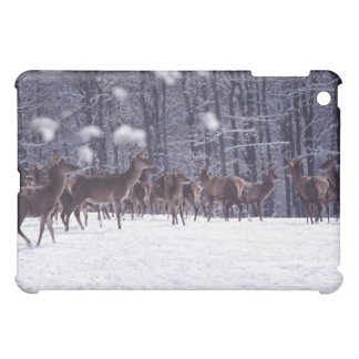 red deer cover for the iPad mini
