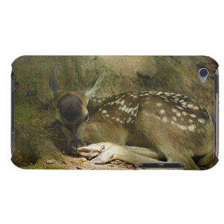 Red Deer Fawn in Forest, Germany iPod Case-Mate Cases
