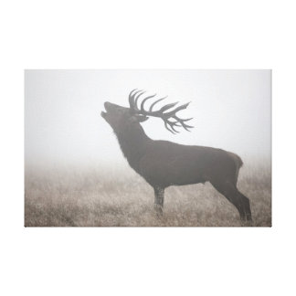 Red Deer in the Mist Canvas