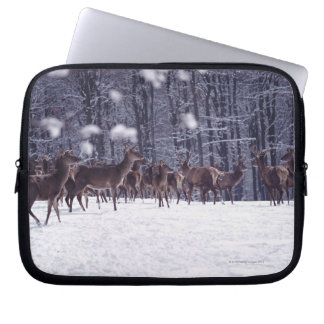 red deer laptop sleeve