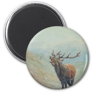 Red deer stag bellowing in a highland glen. 6 cm round magnet