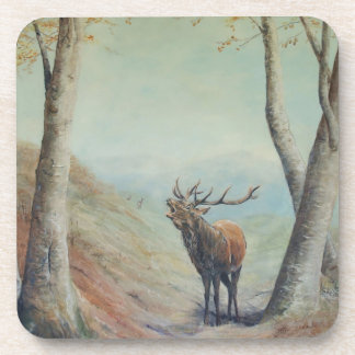 Red deer stag bellowing in a highland glen. beverage coasters