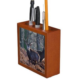 Red Deer Stag Portrait In Autumn Fall Winter Desk Organiser
