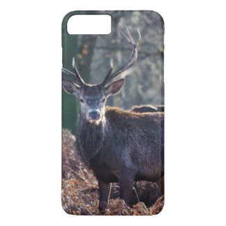 Red Deer Stag Portrait In Autumn Fall Winter iPhone 8 Plus/7 Plus Case