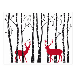 Red deers in birch tree forest postcard