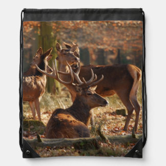 Red Deers In The Autumnal Wood Drawstring Bag