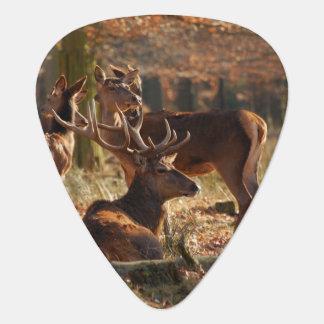 Red Deers In The Autumnal Wood Plectrum