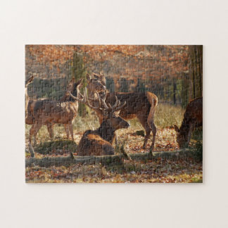 Red Deers In The Autumnal Wood Puzzle