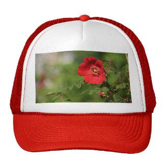 Red Delight Trucker Hats