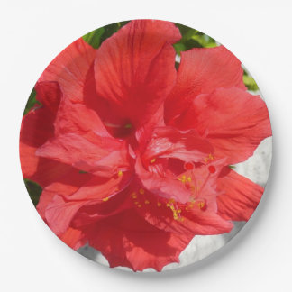 Red Double Hibiscus Flower Paper Plate