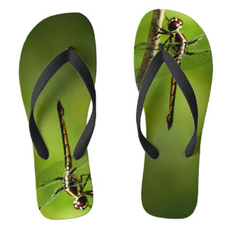 Red Dragonfly Photograph On Flip Flops