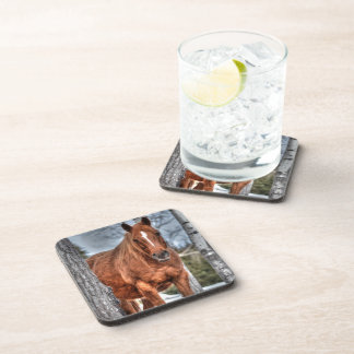 Red Dun Ranch Horse Animal-lover Photo Drink Coasters