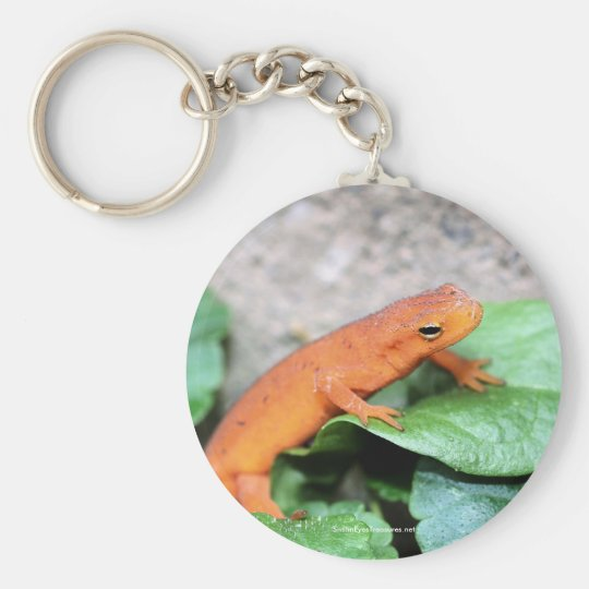 Red Eft Salamander Nature Photo Keychain Keyring