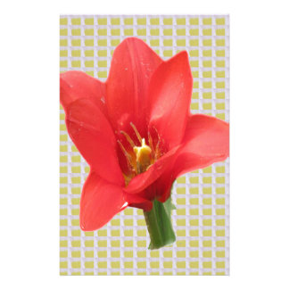 Red Exotic Tulip Flower Petal based Abstract Art 7 Stationery