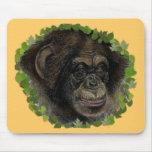 Red eye monkey mouse pad