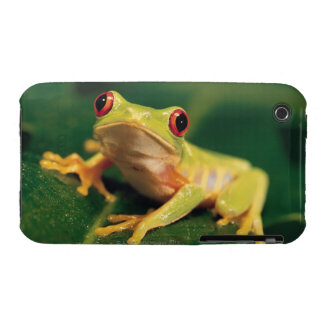 Red eye tree frog Case-Mate iPhone 3 cases