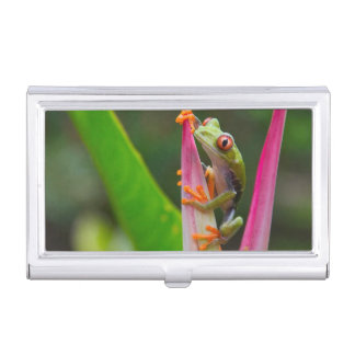 Red-eye tree frog, Costa Rica 2 Business Card Holder