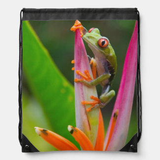 Red-eye tree frog, Costa Rica 2 Drawstring Bag