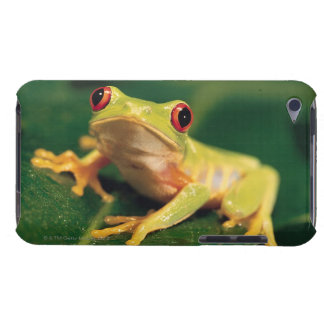 Red eye tree frog iPod touch Case-Mate case
