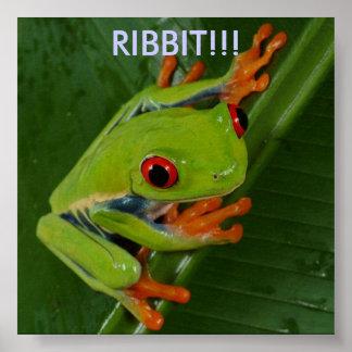 Red-Eye-Tree-Frog, RIBBIT!!! Poster