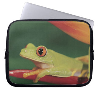 Red eye tree frog sitting on flower laptop sleeve