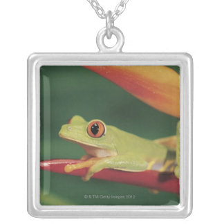 Red eye tree frog sitting on flower silver plated necklace