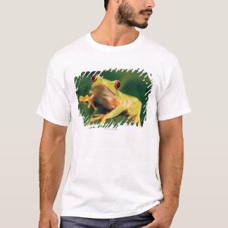 Red eye tree frog T-Shirt