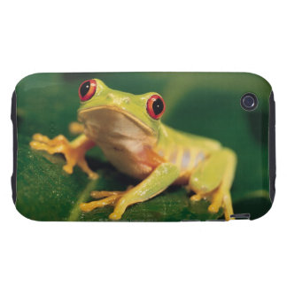 Red eye tree frog tough iPhone 3 cases