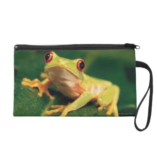 Red eye tree frog wristlet purse