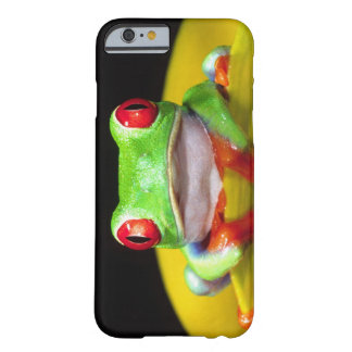 Red Eye Treefrog, Agalychinis callidryas, Native Barely There iPhone 6 Case