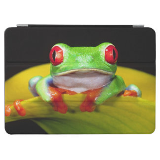 Red Eye Treefrog, Agalychinis callidryas, Native iPad Air Cover