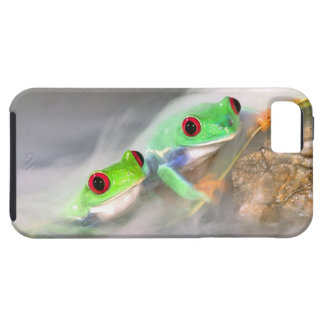 Red Eye Treefrog in the mist, Agalychinis 2 iPhone 5 Cover